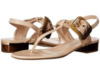 Burberry Ceilab Lc Antique Taupe Pink Women's Sandals