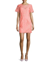 Veronica Beard Floral Embroidered Lace Shift Dress Neon Pink Nude