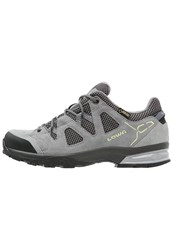 Lowa Phoenix Gtx Hiking Shoes Grau Mint Grey