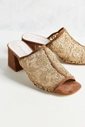 Jeffrey Campbell Derry Lace Mule Taupe