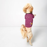 River Island Womens Pink Ri Dog Stripe Print T Shirt