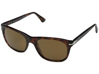 Persol 0Po3102s Havana Brown Polarized Fashion Sunglasses