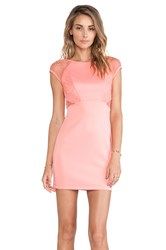 Ladakh Laced Neoprene Dress Peach