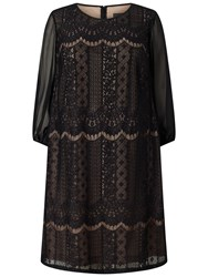 Adrianna Papell Plus Size Striped Lace Shift Dress Black Pale Pink