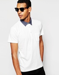 Peter Werth Polo Shirt With Check Collar White