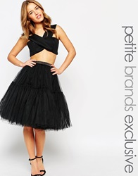 True Decadence Petite Tulle Skirt Black