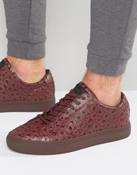 Religion Ostrich Print Trainers Red