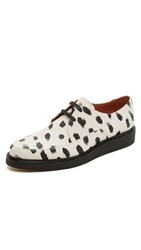 Paul Smith Nico Lace Up Oxfords White Hand Painted Black Dot