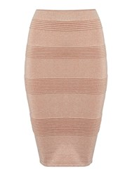 Endless Rose Panelled Bodycon Skirt Dusty Pink