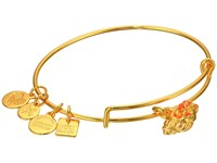 Alex And Ani Charity By Design Hermit Crab Bangle Yellow Gold Bracelet