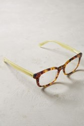 Anthropologie Symposium Reading Glasses Brown Motif