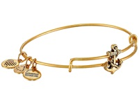 Alex And Ani Seaside Slider Anchor Expandable Wire Bangle Rafaelian Gold Finish Bracelet