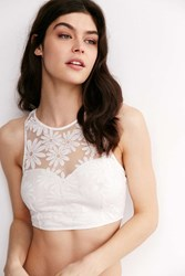 Out From Under Phoenix Floral Mesh Bra Cream