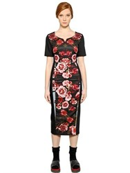 I'm Isola Marras Rose Printed Stretch Cotton Dress