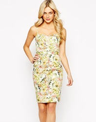 Oasis Ditsy Floral Pencil Dress Multiyellow