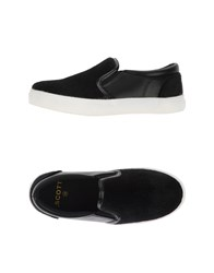 Scott Footwear Low Tops And Trainers Women Black