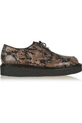 Purified Snake Effect Leather Creepers Animal Print