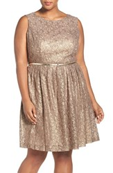 Ellen Tracy Plus Size Women's Belted Metallic Lace Pleat Fit And Flare Dress