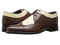 Stacy Adams Dayton Brown Ivory Men's Lace Up Wing Tip Shoes