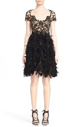 Women's Marchesa Embroidered Illusion And Feather A Line Cocktail Dress