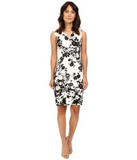 Adrianna Papell Floral And Line Printed Pleated Sheath Dress Ivory Black Women's Dress Multi