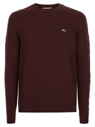 Lacoste Crew Neck Cable Knit Sweater Brown