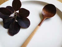 Half Lacquer Spoon By Atelier Tree Song Oen Shop