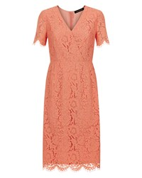 Jaeger Lace Dress Pink