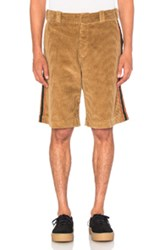 Palm Angels Corduroy Work Shorts In Brown