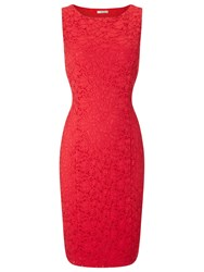 Precis Petite Jasmine Lace Shift Dress Coral Red