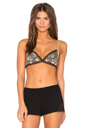 Free People Kiss Soft Bra Brown