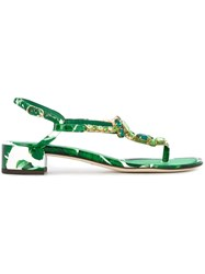 Dolce And Gabbana 'Keira' Low Sandals Green