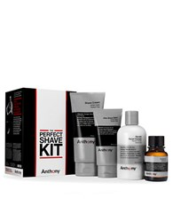 Anthony Logistics For Men The Perfect Shave Kit0308 10713035R No Color