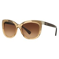 Coach Hc8171 Cat's Eye Gradient Sunglasses Brown Crystal Tortoise
