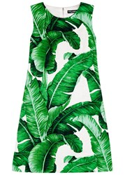 Dolce And Gabbana Palm Tree Print Jacquard Dress Green