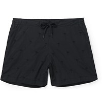 Tomas Maier Palm Tree Embroidered Cotton Shorts Black