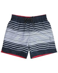 Tommy Hilfiger Blue And White Striped Swim Shorts