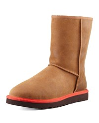 Classic Contrast Midsole Short Boot Chestnut Ugg Australia Brown