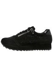 Kennel Schmenger Cat Trainers Black