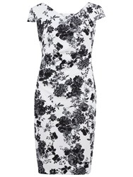 Gina Bacconi Floral Pique Dress White Black