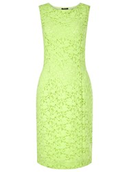Precis Petite Jasmine Lace Shift Dress Citrus Green