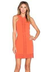 Greylin Millany Laser Cut Dress Orange