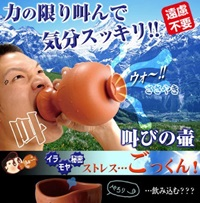 Amazon.Com Stress Reduction Japanese Shouting Vase Holds Your Anger Health And Personal Care