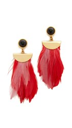 Lizzie Fortunato Parrot Earrings Punch