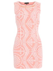 Chase 7 Embroidered Necklace Detail Dress Pink