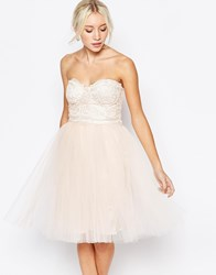Little Mistress Lace Bustier Dress With Tulle Skirt Pink