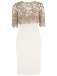 Gina Bacconi Antique Lace Top And Crepe Dress Truffle