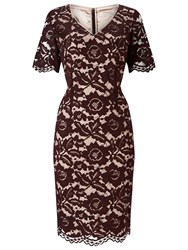 Jacques Vert Opulent Lace Dress Brown