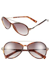 Women's Bcbgmaxazria 56Mm Aviator Sunglasses Brown Combo