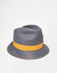 Catarzi Straw Trilby Hat Blue